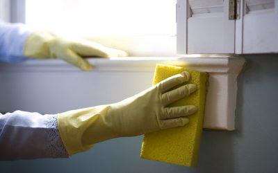 Clean Home Check List